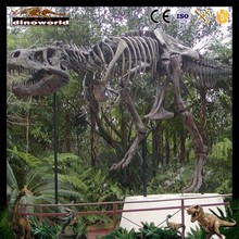 DW-00122 Dinosaur fossil skeleton for museum ,outdoor exhibition