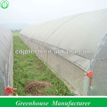 polytunnel greenhouse with good ventilation