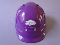 Safety helmet with chinstrap and skull guard/Helmet for sale-Quality meet CE EN397 standard