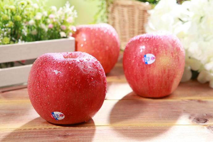 Professional Delicious High Quality Fresh Red FU ji Apple