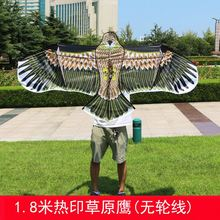 China Factory Ozone Spectra Control Stunt Kite Dual Line