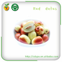Best Fresh Fruits Green /Red Dates packaging boxes