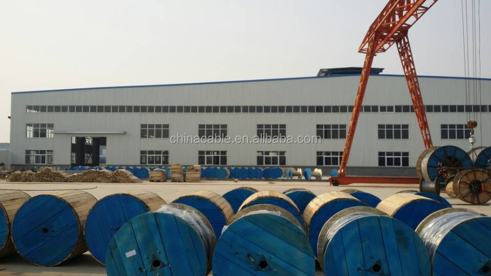 High Quality 1kV XLPE Insulated Concentric Cable For Sale