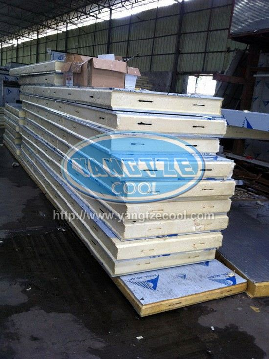 Injected Roofing PU Sandwich Panel With Color Coated for keep ice quality made in china cold room storage