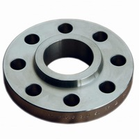 Stainless Steel Raised Face Flange Customizable