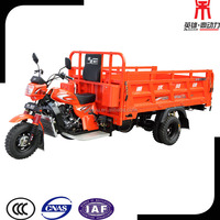 China Strong Moto Carro de 5 Ruedas, 250cc/300cc Three Wheel Bike for Adults