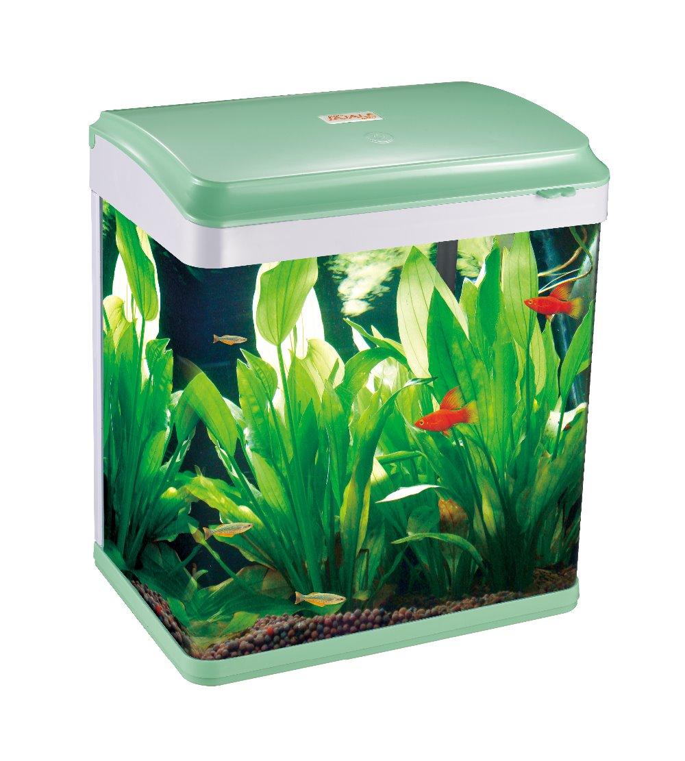 Fish tank aquarium tank glass fish tank iq c380 buy for Buy fish tank