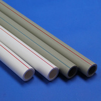 Wholesale China PPR Pipe Brand White Color