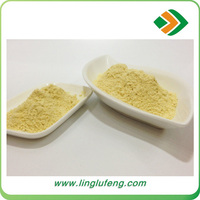 America Garlic chives extract powder with high quality