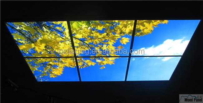 600*600mm blue sky Modern LED commercial lighting
