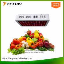 Greenhouse indoor Sell Well 300w lights and led grow light