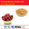 Zhen Ye Ying Tao Pure Bulk Low Price Acerola Cherry Extract