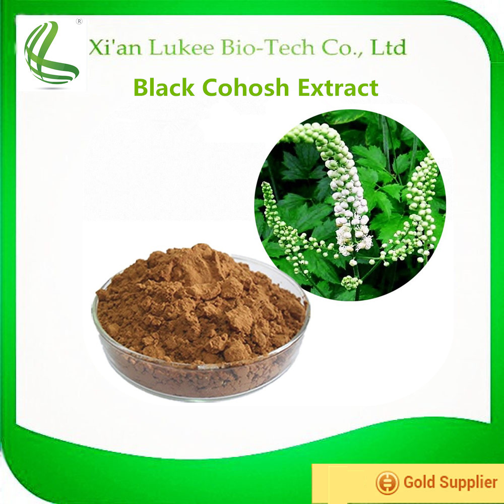 Free sample natural Black Cohosh extract Triterpenoid saponins 2.5% in bulk