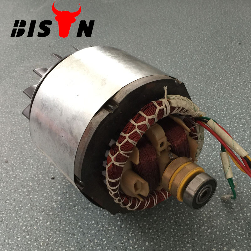BISON(CHINA) Gasooline Engine Copper Alternator 6.5hp Generator Spare Parts