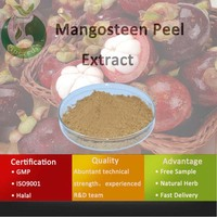 Free sample mangosteen extract powder/extract from manggis
