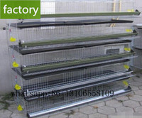 300 quails metal battery layer quail cage for sale in kenya