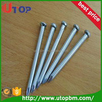 Common stell nail roofing nails galvanized