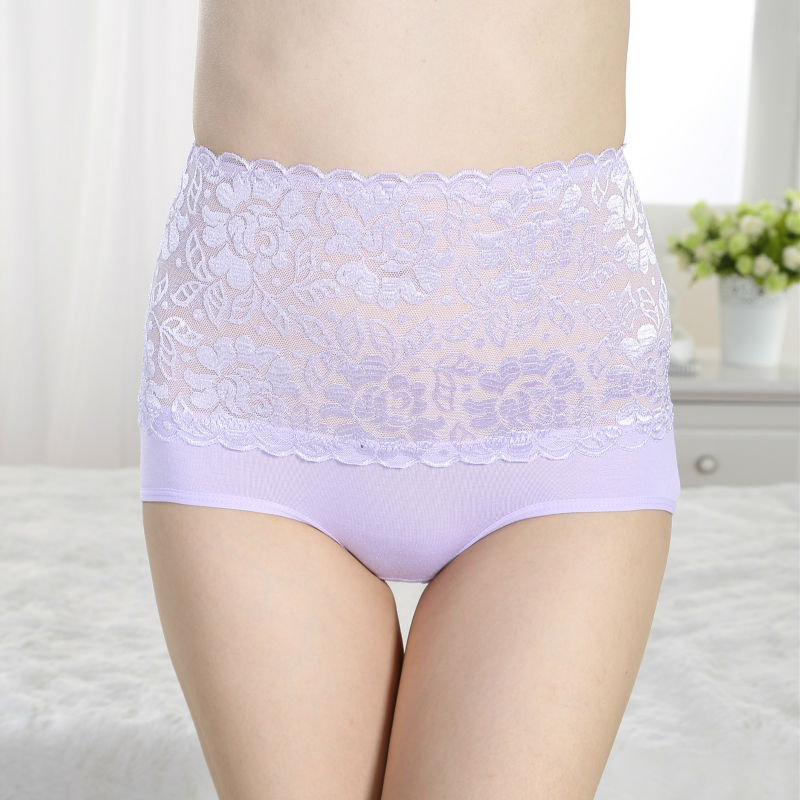 Luxury Lady lace high waist panty underwear for big women underwear fashion show