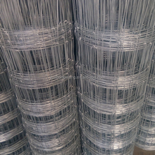 sheep wire mesh fence, field fence, animal fence (Anping factory)