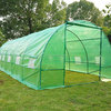 Polytunnel Greenhouse
