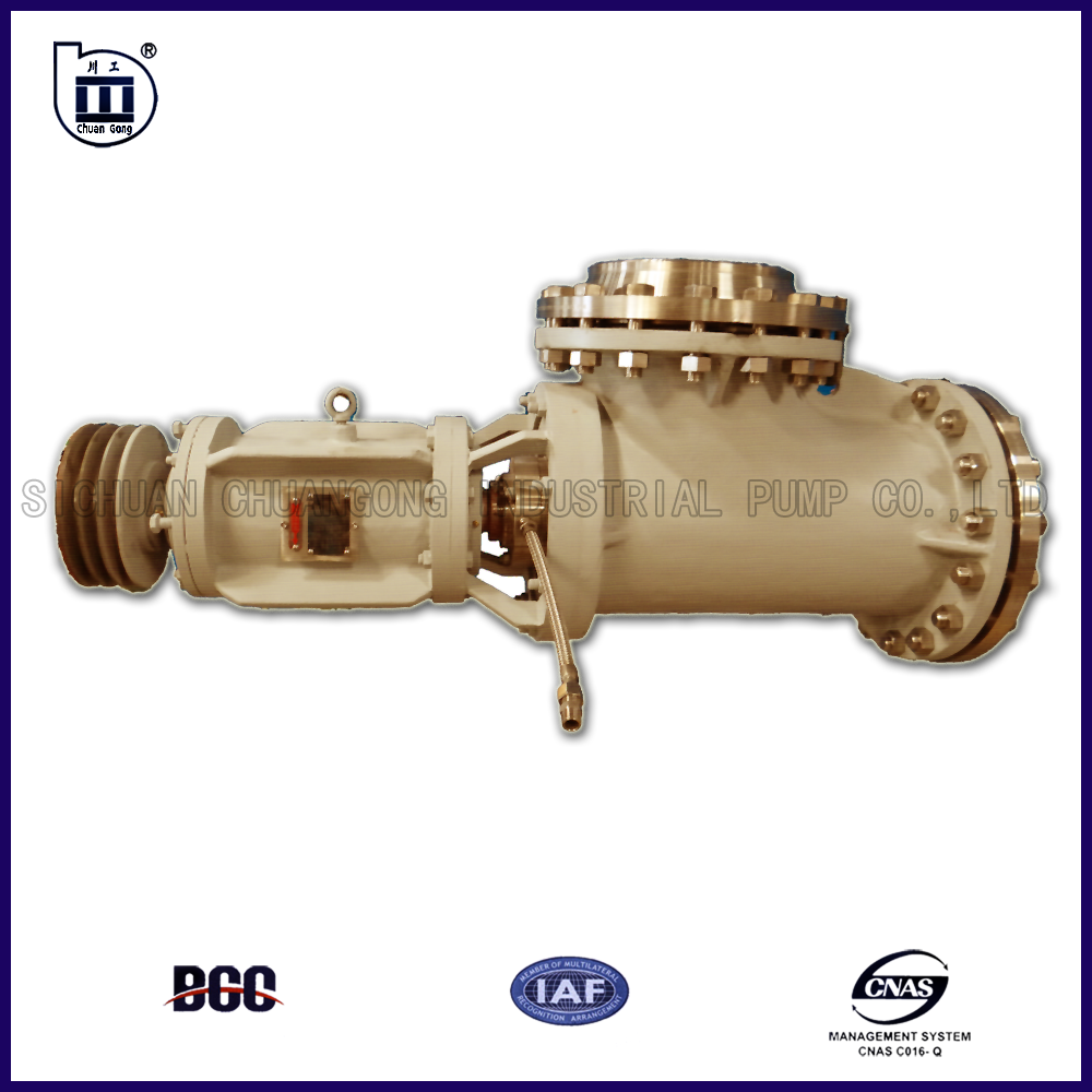 ZW axial flow pump