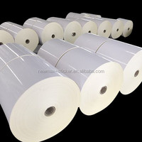 Cast Coated Self Adhesive Label Sticker Paper Roll