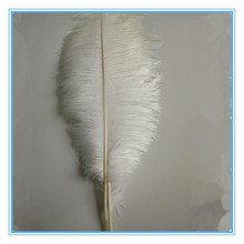 Factory cheap dyed ostrich feather wedding party decoration
