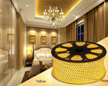 Decoration LED Strips Waterproof SMD RGB Led Strip Light 5050