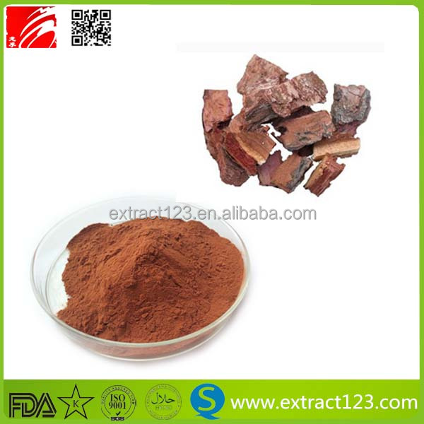 Free sample natural pine bark extract/pine bark extract powder