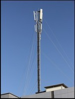 TL Engineering High Quality Monopoles Tower for Sale