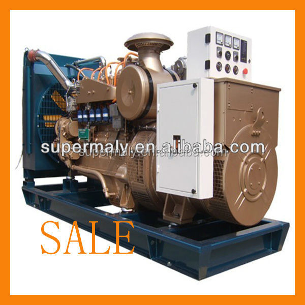 Hot!!! methane gas generator from weifang