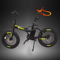 Hasky fat tyre, High power low price electric bike