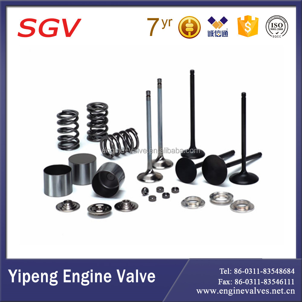 new Diesel parts engine valve,valve guide and valve seat for Daewoo