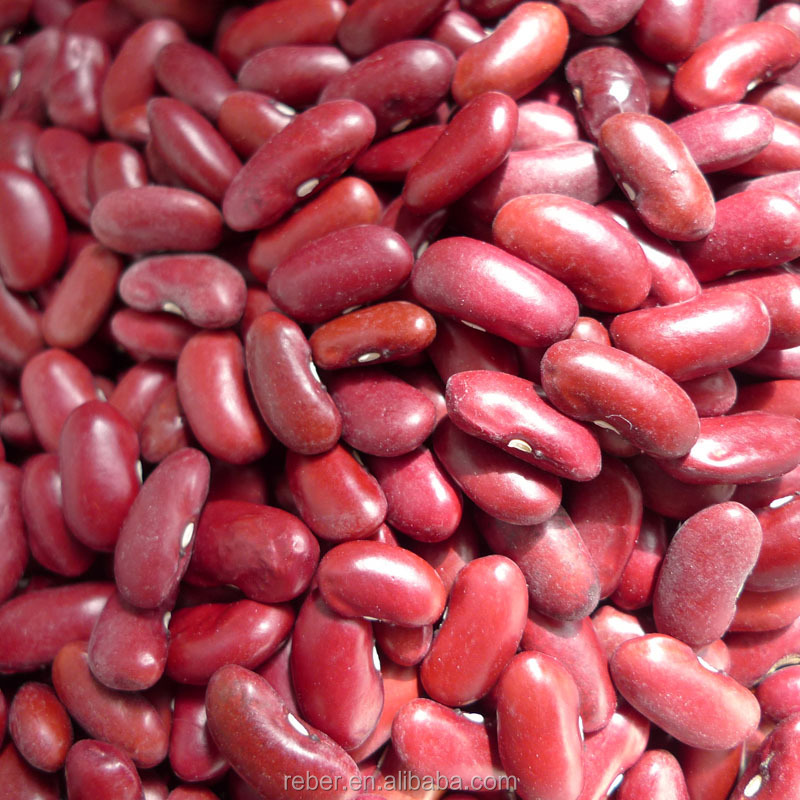 CROP2016 Dark Red Kidney Beans/DRKB/ RAJMA/Shanxi Origin/Size190-210pcs/100g/HPQ QUALITY