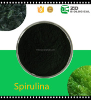 High nutrition plant extract powder best spirulina heavy metal detox