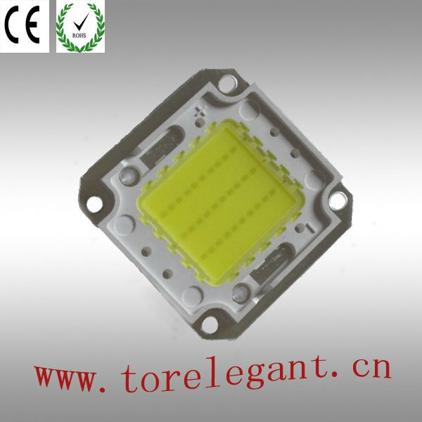 Torelegant 30W high power led warm white
