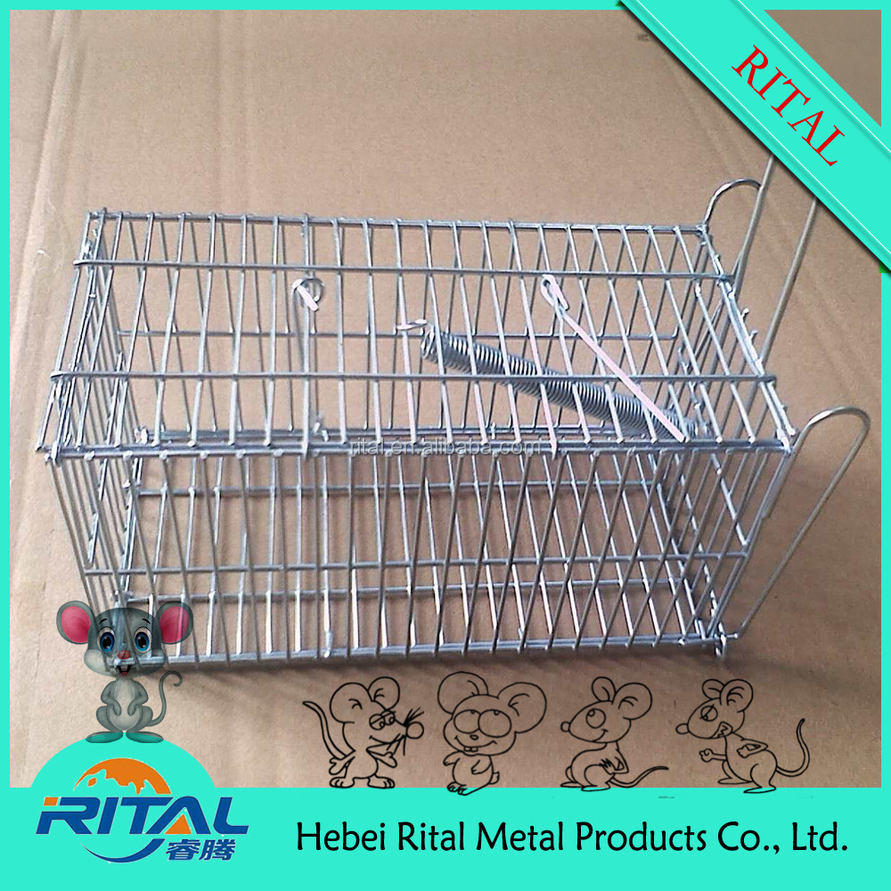 Rital Stainless Steel Humane Metal Rodent Rat Trap Cage