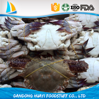 Best Seafood Blue Crab Exporters