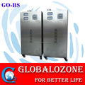 PEM air purifier ozone generator for kitchen removing bad odor and sterilizaiton in hotel, restaurant
