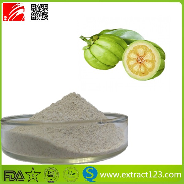 Best selling organic garcinia cambogia extract powder