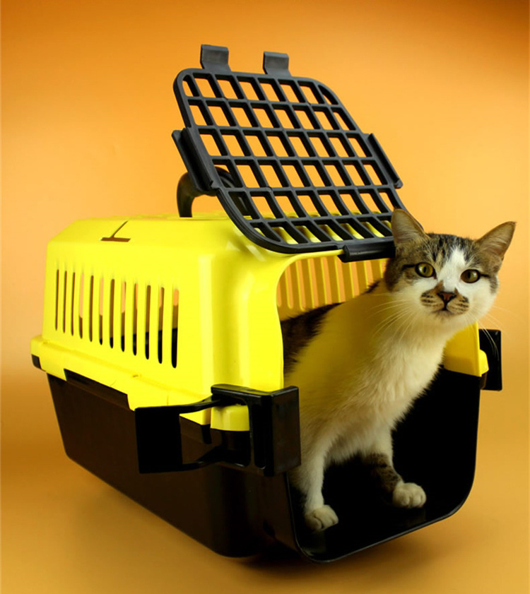 More And More Popular Airline approved plastic Collapsible Pet Cages Dog Crate Puppy Kennels
