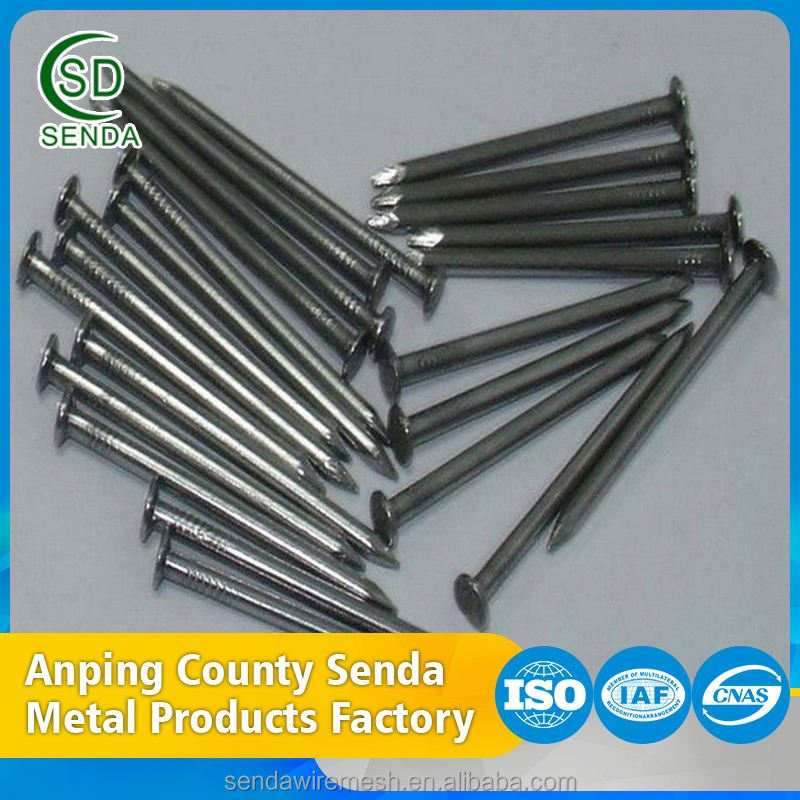 Hot Dip Common Nails Carbon Steel Nail Iron Nail