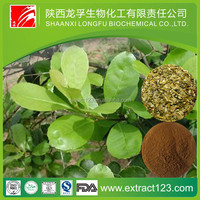 Herbal product belladonna herb extract