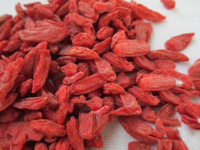 High quality berries goji / dried goji berry for health