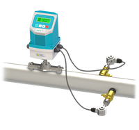 Fixed Mounted Probe Rod Digital Ultrasonic