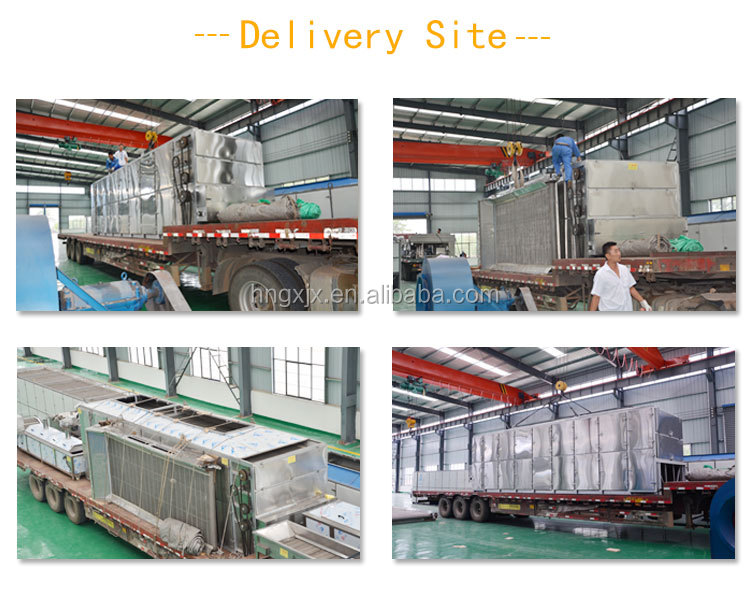 Guoxin automatic potato chips dryer