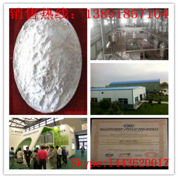 Professional organic resveratrol bulk powder made in China