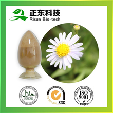 Seed Part and Powder Form Chamomile Extract 10:1