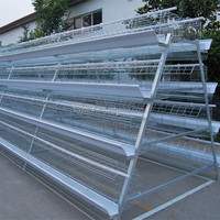 Metal Breeding Cage For Chicken On Kenyan Farm