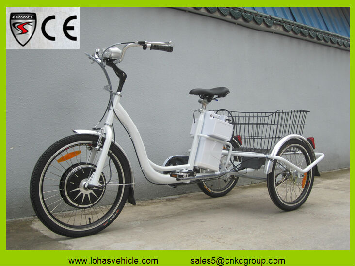 Moldova hot sale trike mini truck cargo trike